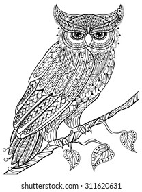 Zentangle magic Owl sitting on branch, for adult anti stress Coloring Page with high details isolated on white background, hand drawn illustration. Vector monochrome sketch. Bird collection.
