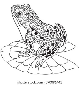 Zentangle stylized cartoon frog, isolated on white background. Sketch for adult antistress coloring page. Hand drawn doodle, zentangle, floral design elements for coloring book.