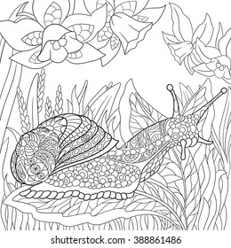 Zentangle stylized cartoon snail crawling among narcissus flowers. Sketch for adult antistress coloring page. Hand drawn doodle, zentangle, floral design elements for coloring book.