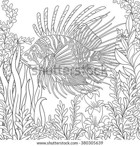 Zentangle Stylized Cartoon Zebrafish Lionfishpterois Volitans Stock