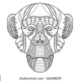 Zentangle stylized chimpanzee head, vector, illustration, freehand pencil, pattern. Monkey doodle. Zen art. Black and white illustration on white background.