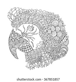Zentangle stylized doodle vector parrot head. Zen ethnic art. Isolated on white. Bird print suits as tattoo, logo template, decoration, coloring book sketch, adult anti-stress coloring page.