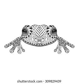 Zentangle stylized frog. Hand drawn doodle animal. Ethnic patterned vector illustration. African, indian, totem, tatto, tribal design. Sketch for avatar, coloring page, tattoo, posters, print, t-shirt
