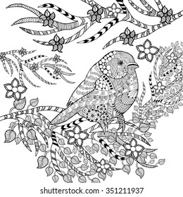 Zentangle stylized tropical bird in flower garden. Animals. Hand drawn doodle. Ethnic patterned illustration. African, indian, totem tatoo design. Sketch for avatar, tattoo, poster, print or t-shirt.