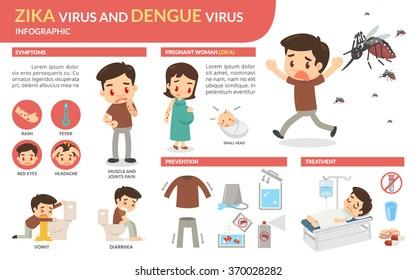 Zika virus and dengue virus infographic. Vector flat design.