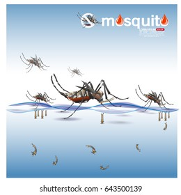 Zika Virus Outbreak and Travel Alert concept. Transmitted by A. aegypti mosquito