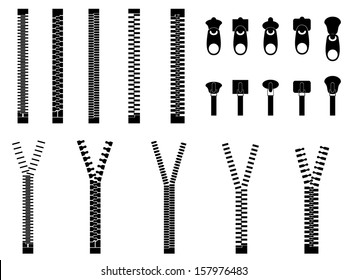 Zippers set illustrated on white
