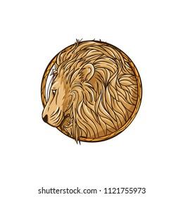 Zodiac Sign Leo Vector Illustration