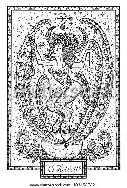Zodiac Sign Taurus Bull May Lily Stock Vector (Royalty Free