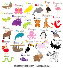 Zoo animal alphabet. Cute cartoon character set. White background. Baby children education. Butterfly, dolphin, flamingo, jaguar, lobster, penguin sloth kangaroo bat eagle unicorn. Flat design Vector