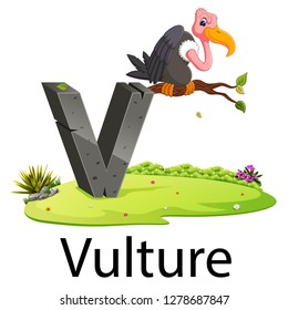 zoo animal alphabet V for Vulture with the good animation