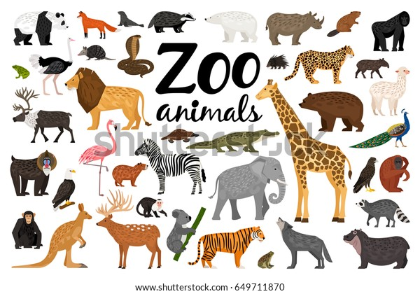 Zoo Animals Collection Stock Vector Royalty Free 649711870