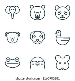 Zoo icons set with bear, mouse, frog and other puppy elements. Isolated vector illustration zoo icons.