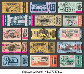 Zoo tickets for zoological park. Vector vintage admit ticket design of wild bear, wolf or duck and wolf, African safari lion, hippopotamus or elephant and buffalo, fox or grouse bird and elk