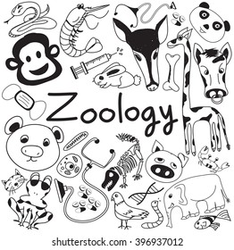 Zoology Biology Doodle Handwriting Icons Of Animal Species And Education Tools In White Isolated Paper Background