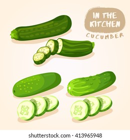 Zucchini and Cucumber : Vegetable Isolated Set : Vector Illustration