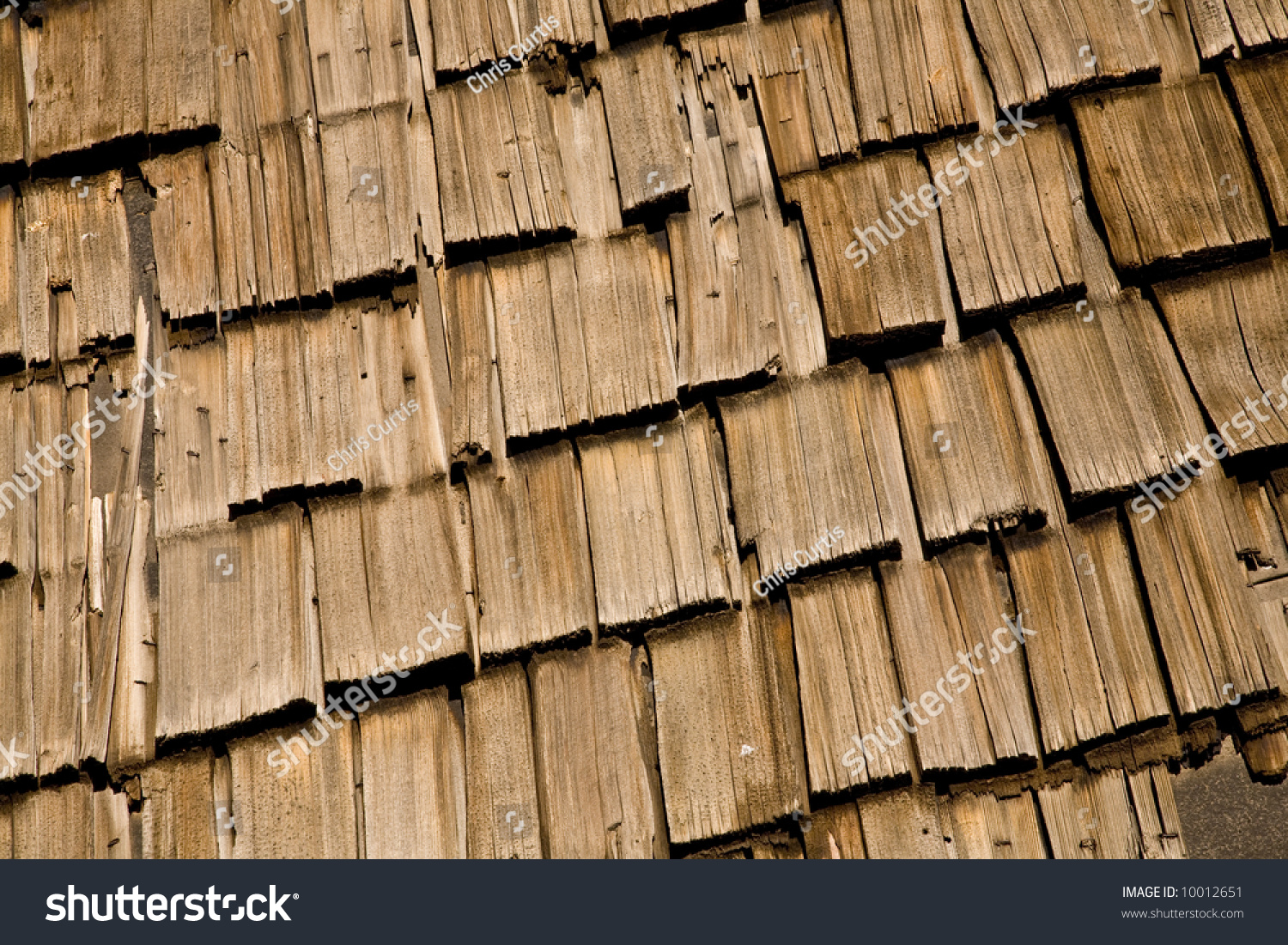 Grungy Cedar Wood Roof Shingles For Background Or Texture.