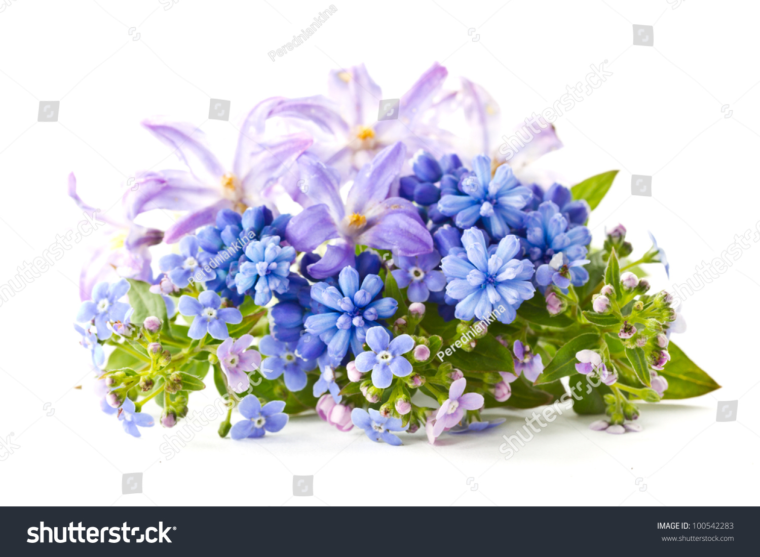Beautiful Bouquet Spring Flowers On White Stock Photo & Image ...