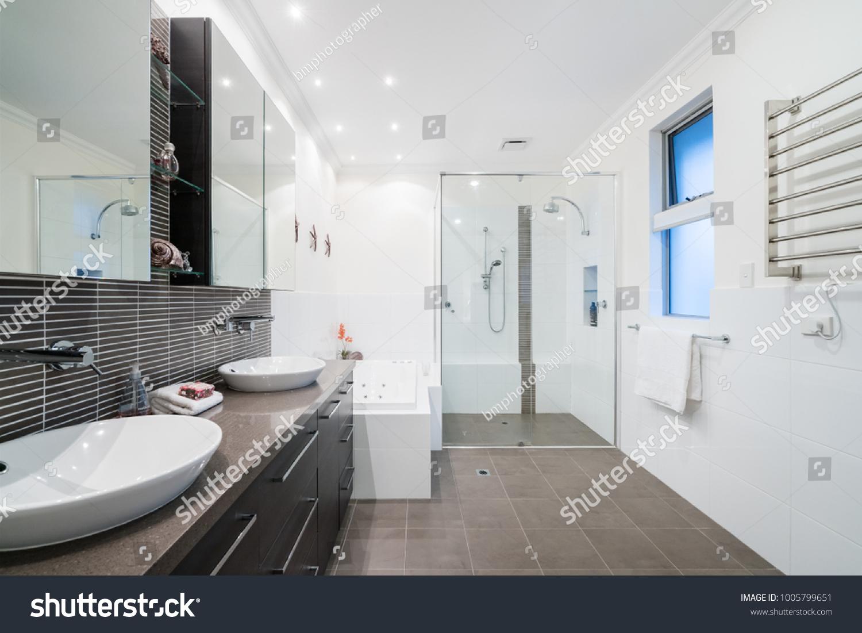 Design of large modern bathrooms