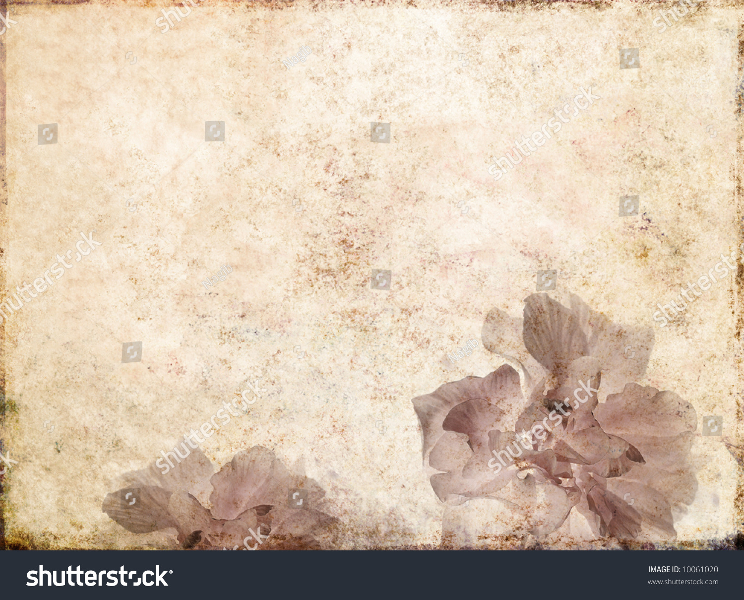 Lovely Light Brown Background Image With Interesting ... - photo#30