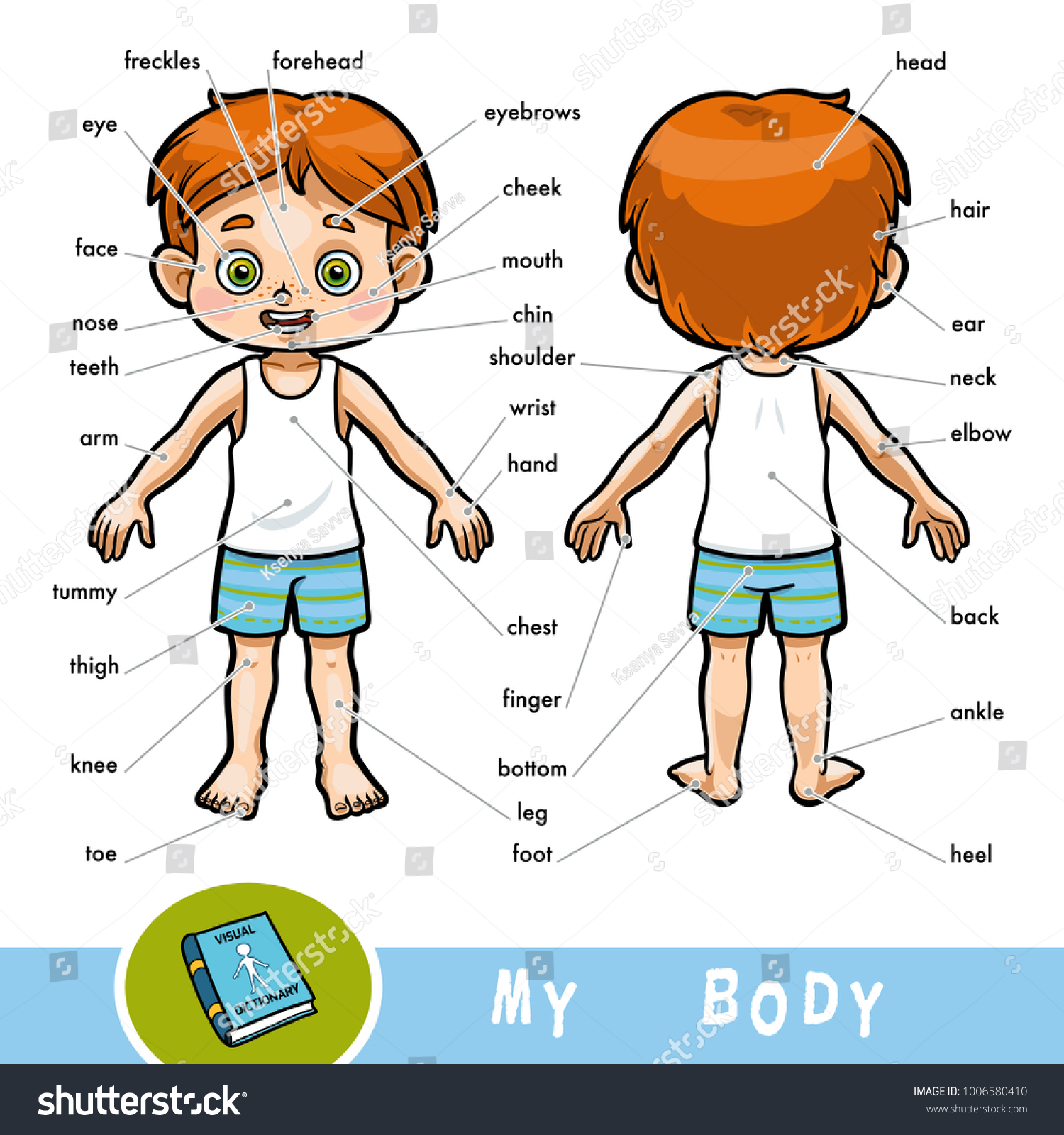 Cartoon Visual Dictionary Children About Human Stock Vector Royalty