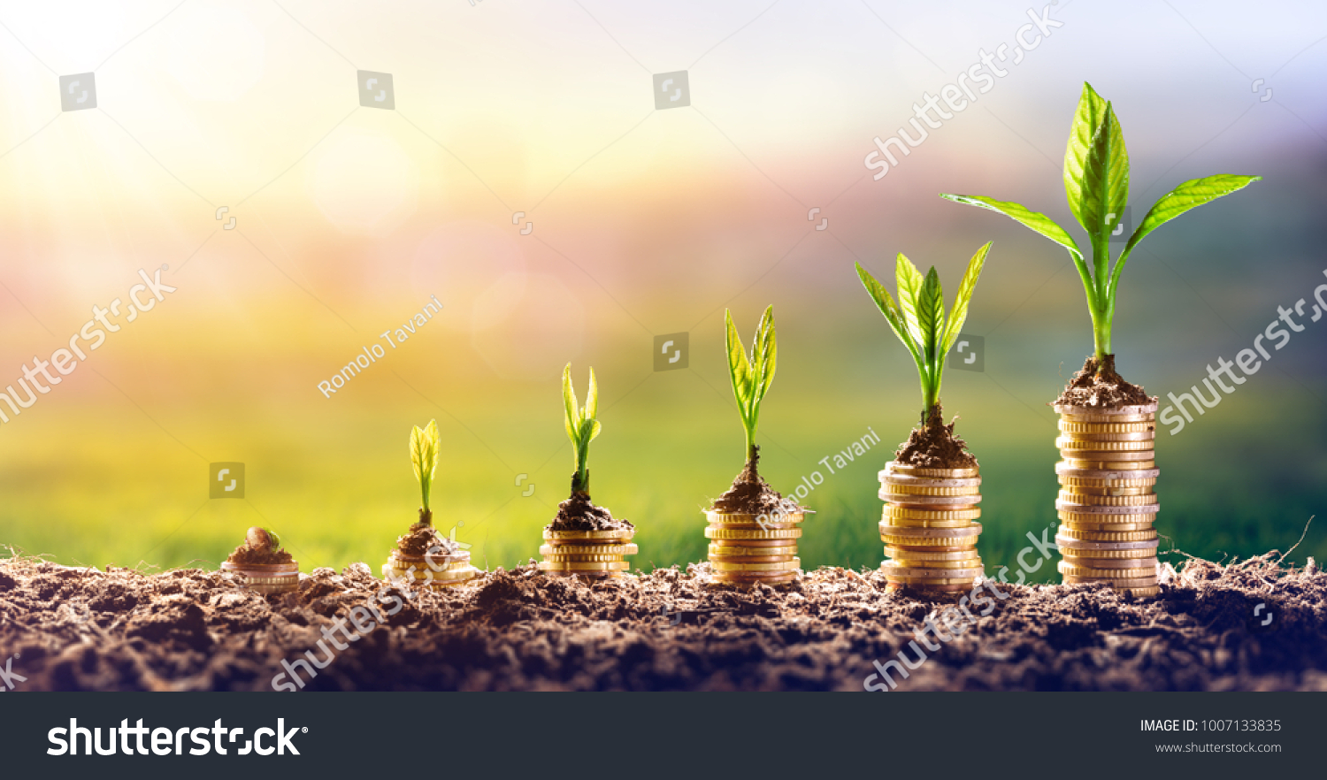Growing Money - Plant On Coins - Finance And Investment Concept #1007133835