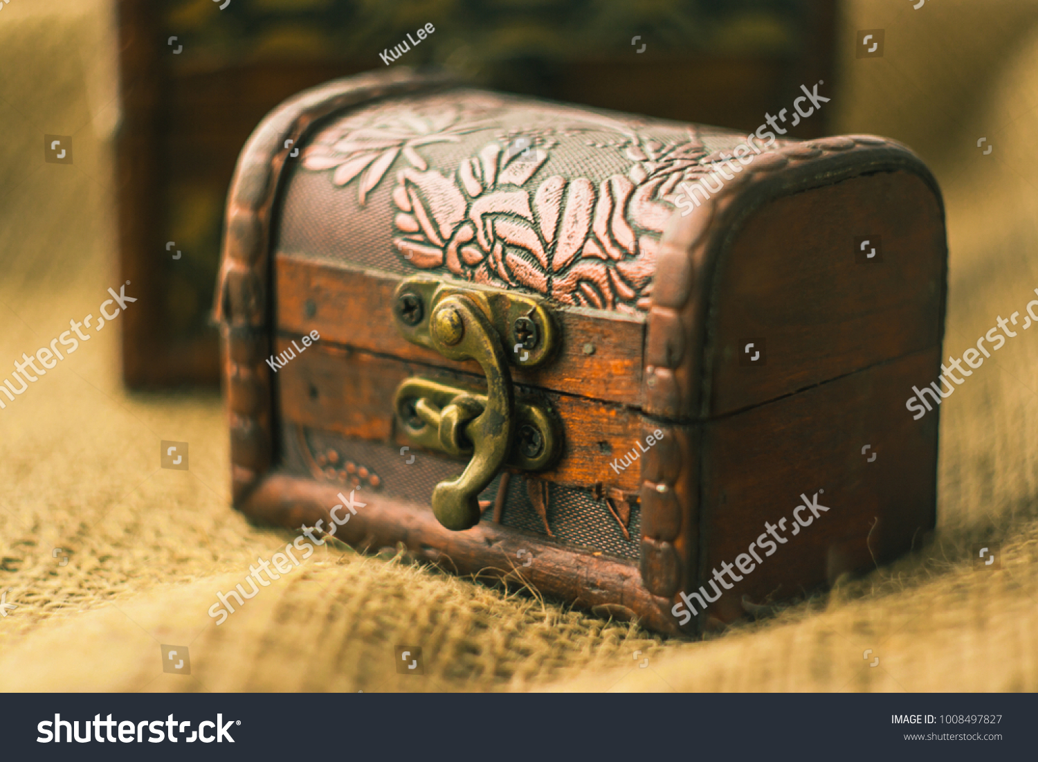 Picture of: Beautiful Decorative Trunk Treasure Chest Storage Stock Photo Edit Now 1008497827