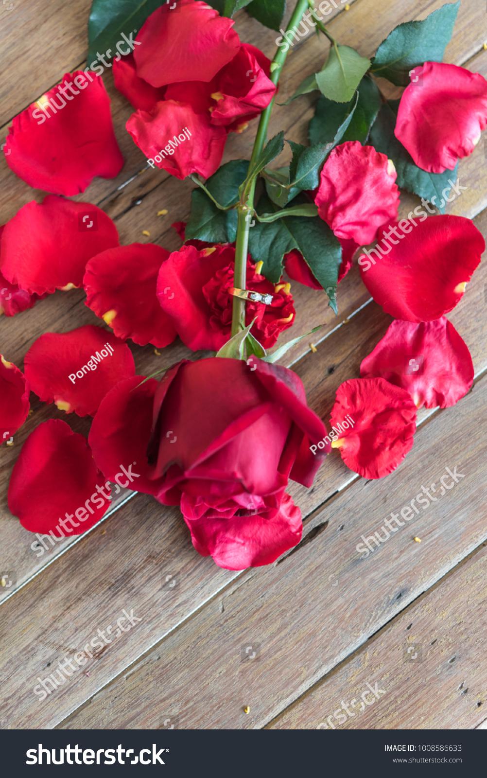 Red rose flower nature beautiful flowers stock photo edit now red rose flower nature beautiful flowers from garden petal of red rose flower and diamond ring izmirmasajfo