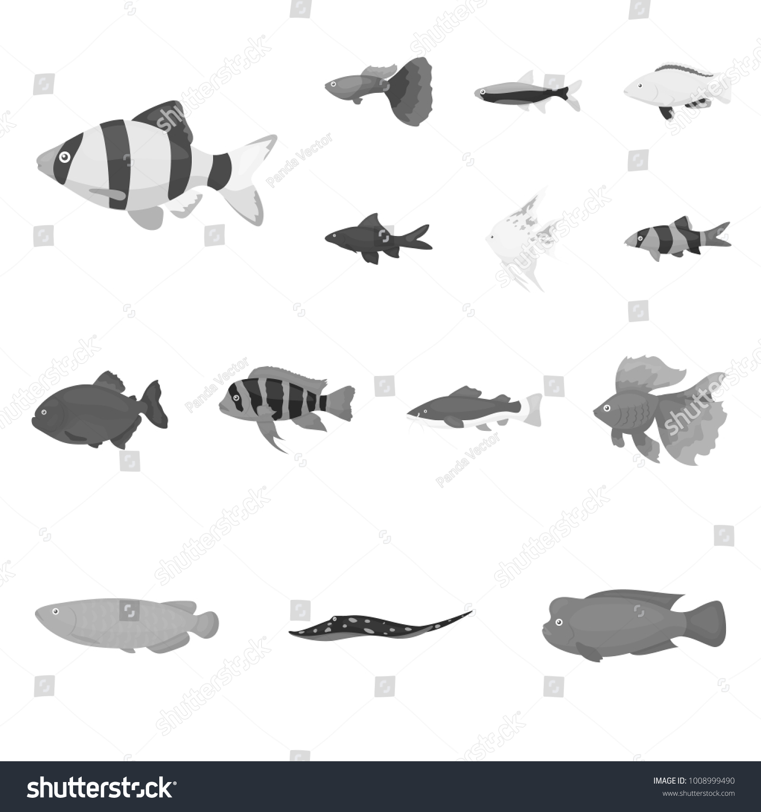 Different Types Fish Monochrome Icons Set Stock Vector Royalty Free