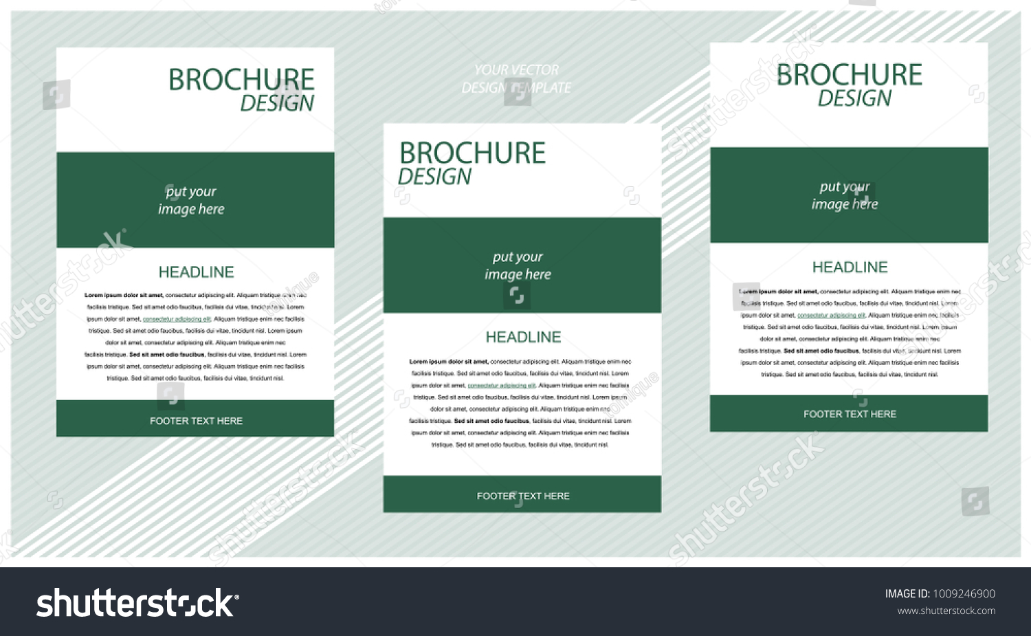 Newsletter Corporate Vector Layout Template Business Stock Vector