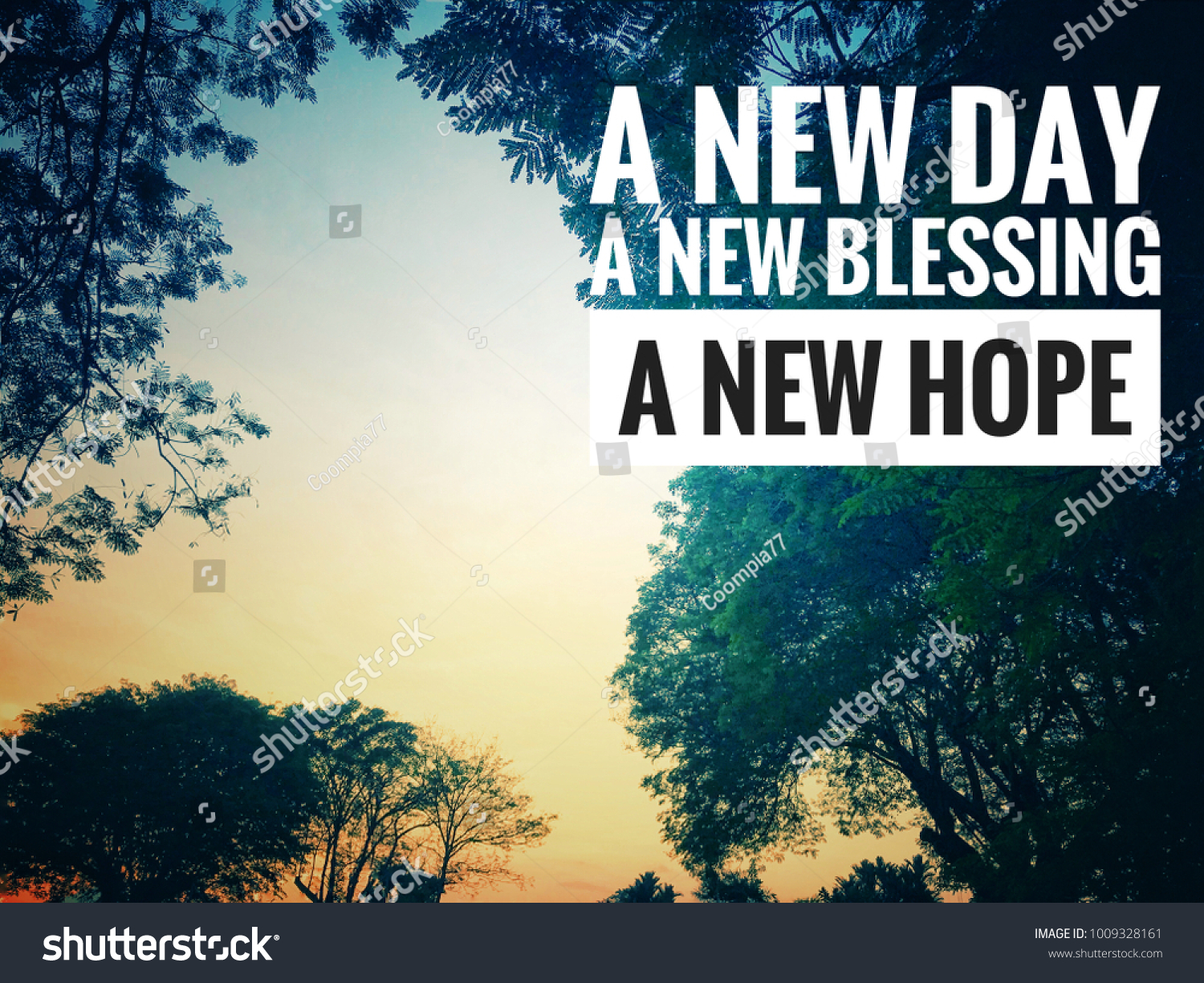 Motivational Inspirational Quotes New Day New Stock Photo Edit Now