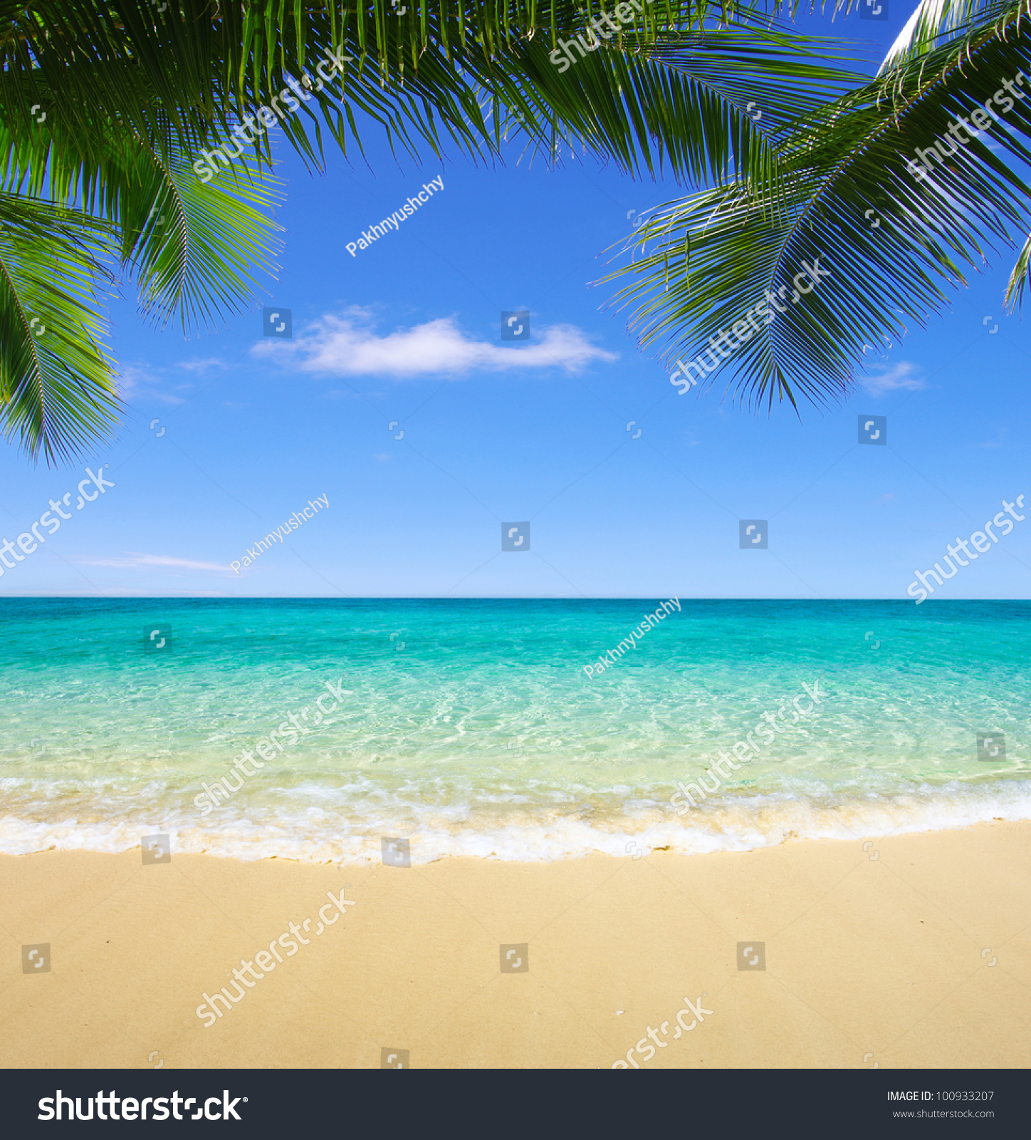 Exotic Beach: Beautiful Beach Tropical Sea Stock Photo 100933207
