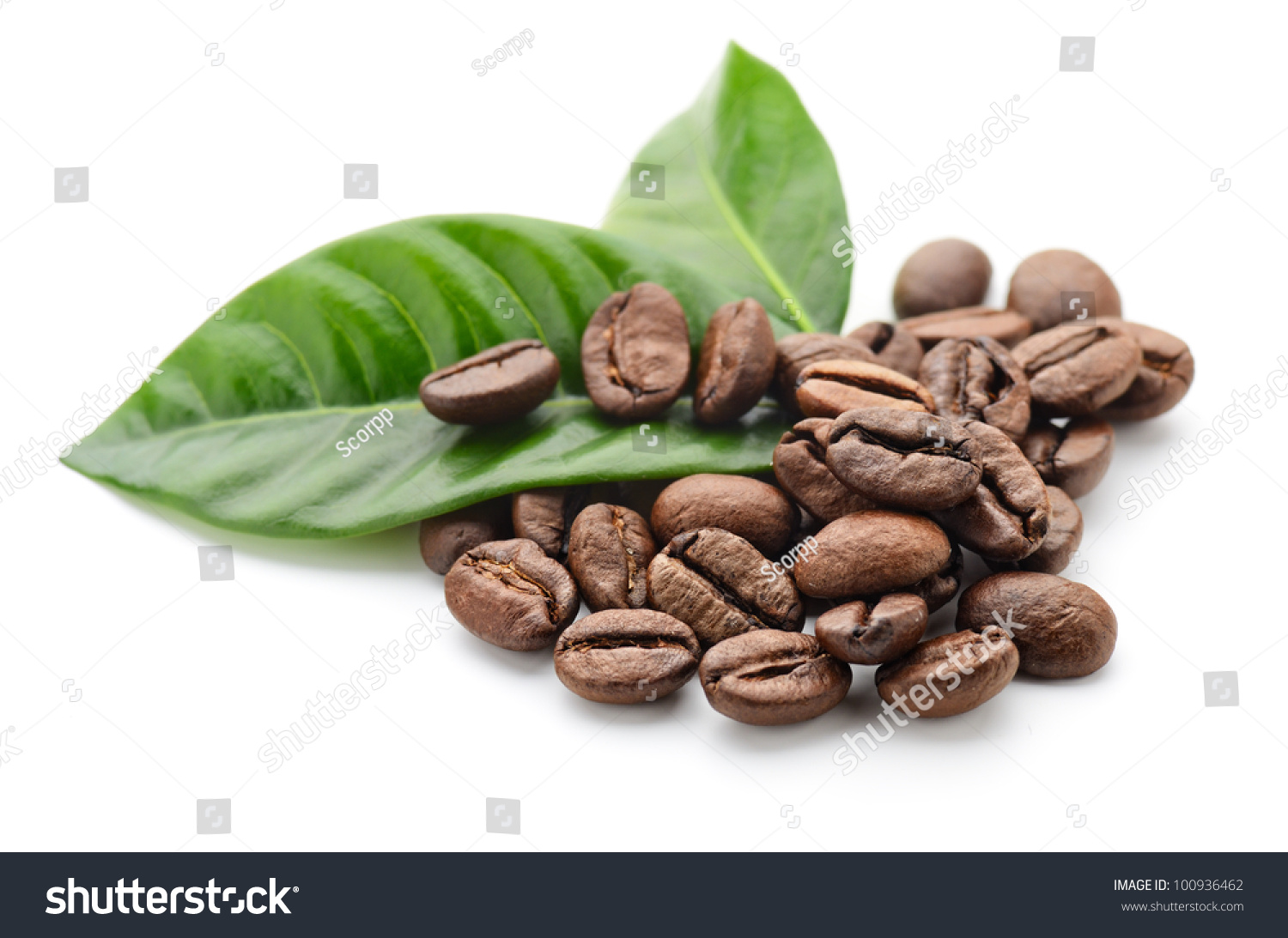 Coffee Grains And Leaves 스톡 사진 100936462 : Shutterstock HD Wide Wallpaper for Widescreen
