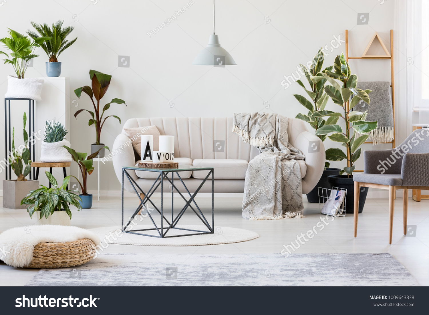 https://image.shutterstock.com/z/stock-photo-pouf-and-grey-armchair-in-botanic-living-room-interior-with-beige-sofa-near-plants-and-table-on-rug-1009643338.jpg