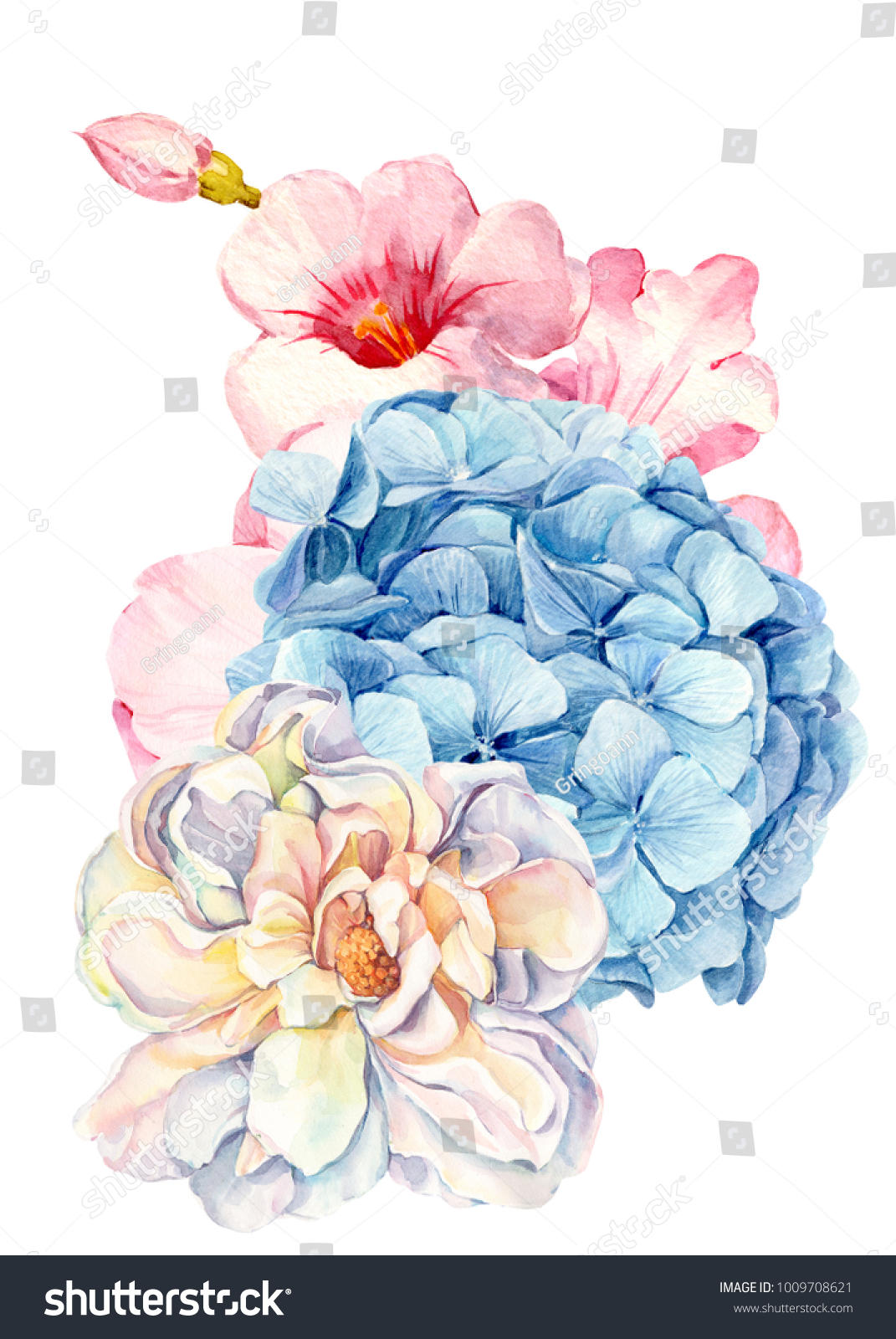 Watercolor hand drawing bouquet flowers roses stock illustration watercolor hand drawing bouquet of flowers roses white hydrangea blue izmirmasajfo