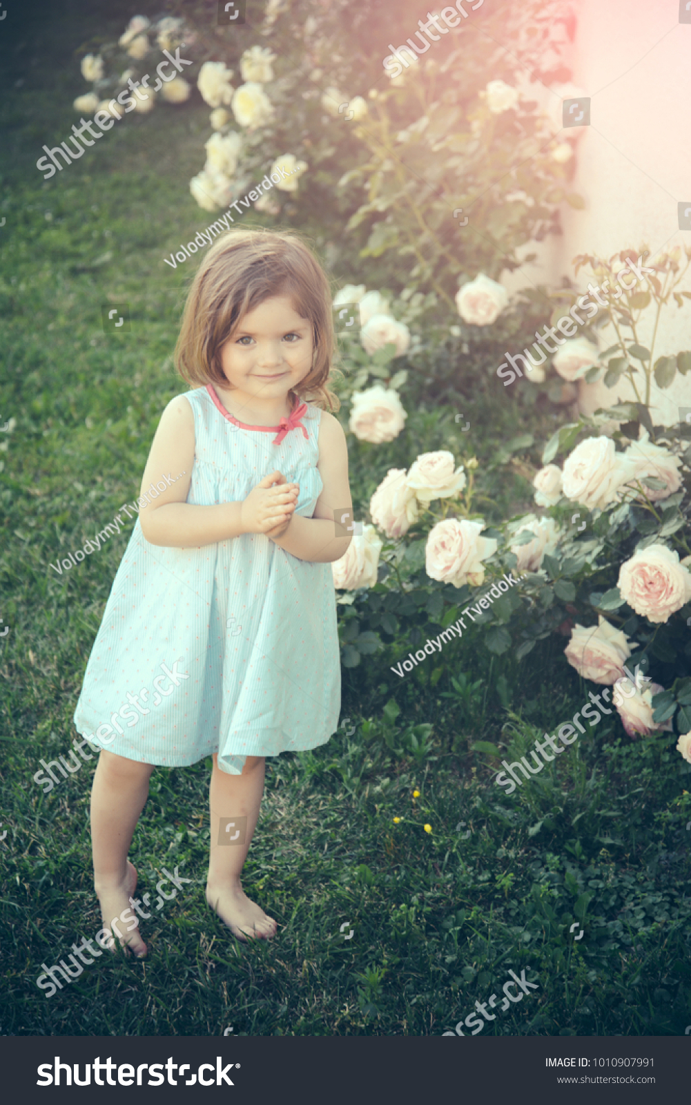 innocence purity youth concept girl smiling stock photo edit now