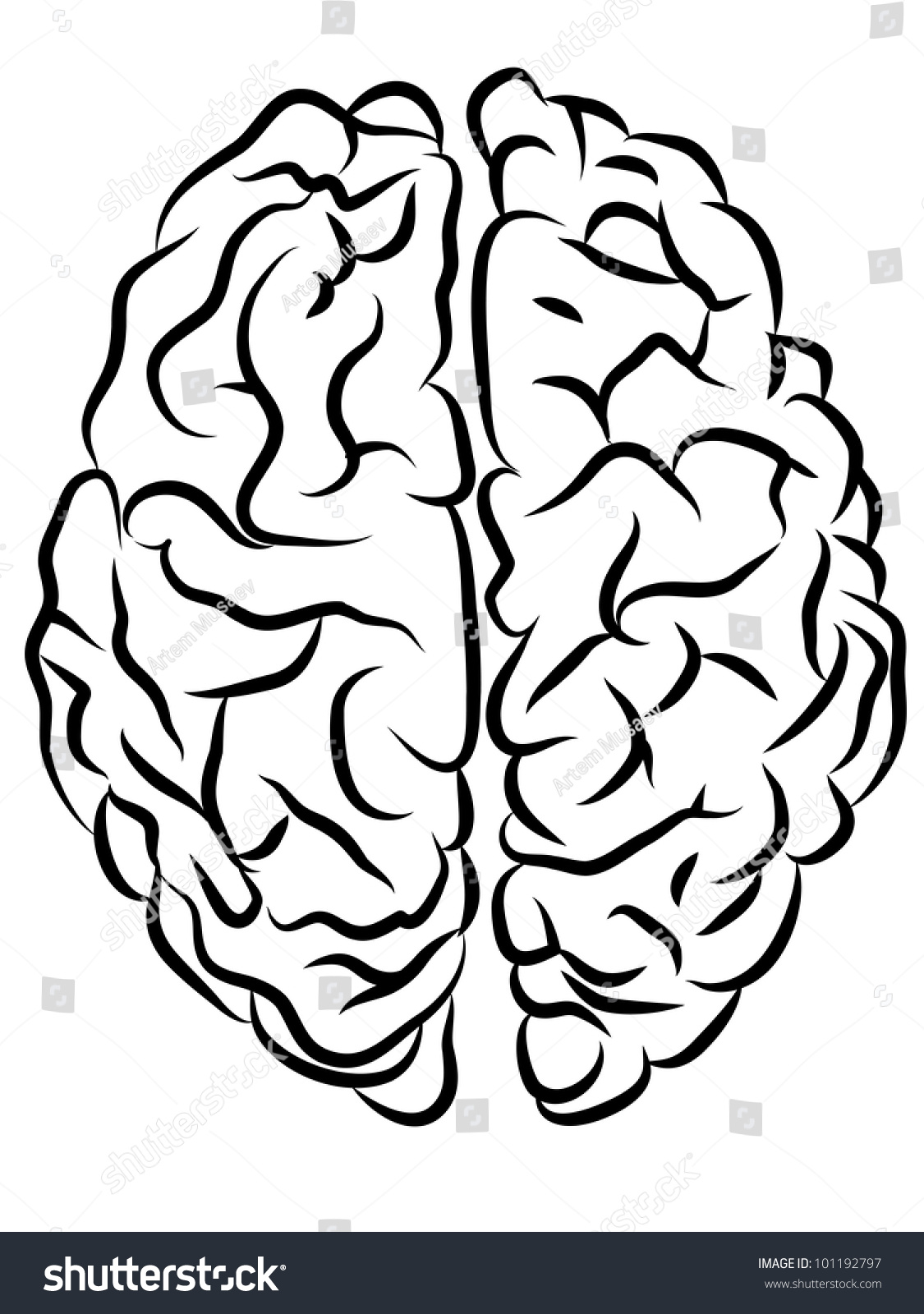 Back > Gallery For > Brain Outline Clipart Black And White