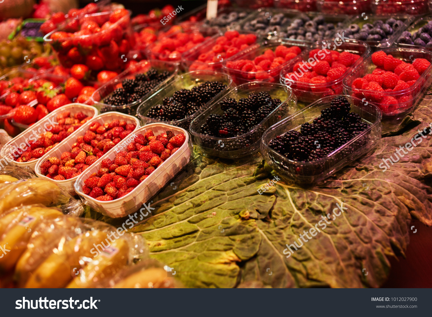 Summer Organic Berries On Display Agriculture Stock Photo (Royalty ...