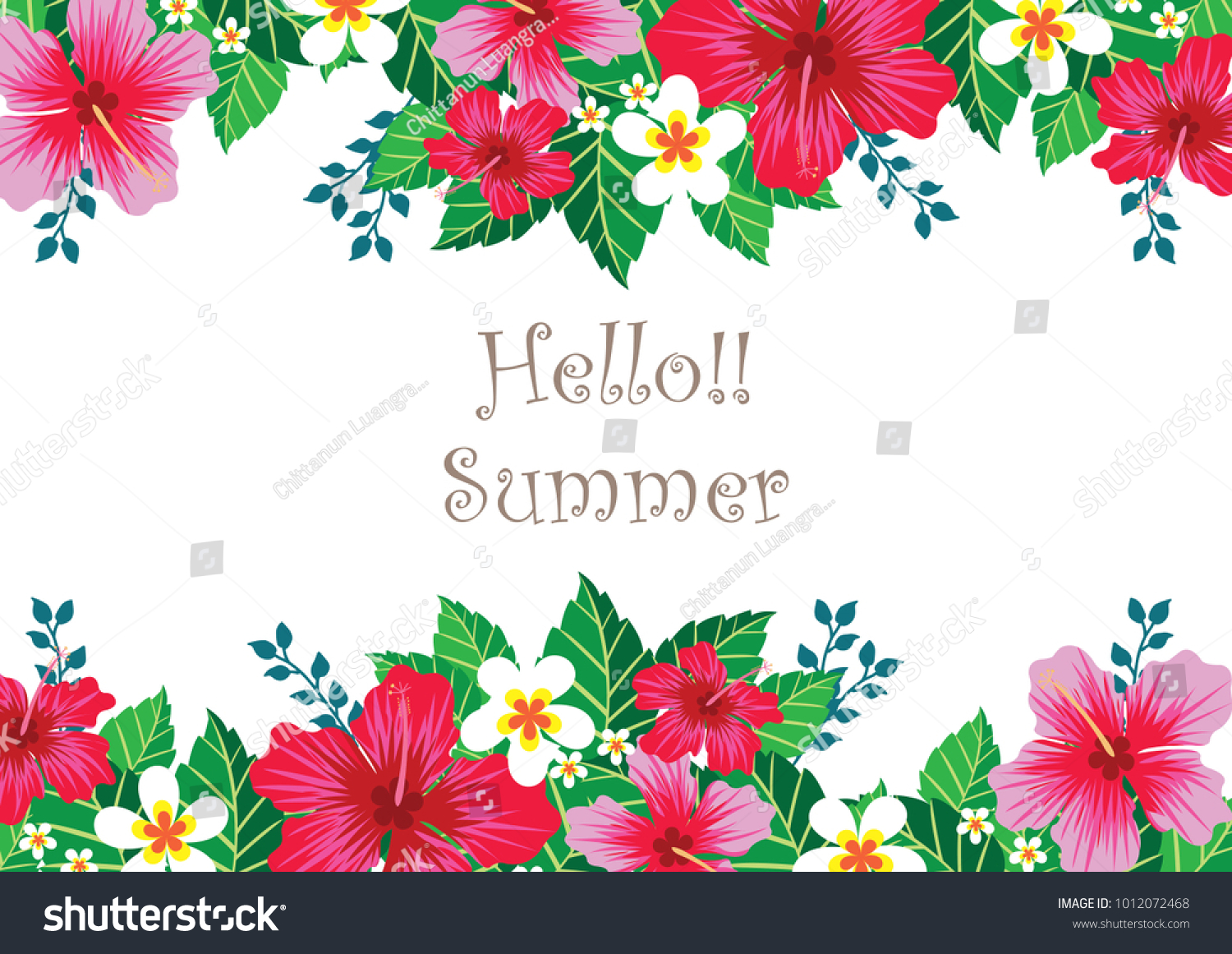 Hibiscus Flowers Border Vector Design Summer Stock Vector Royalty