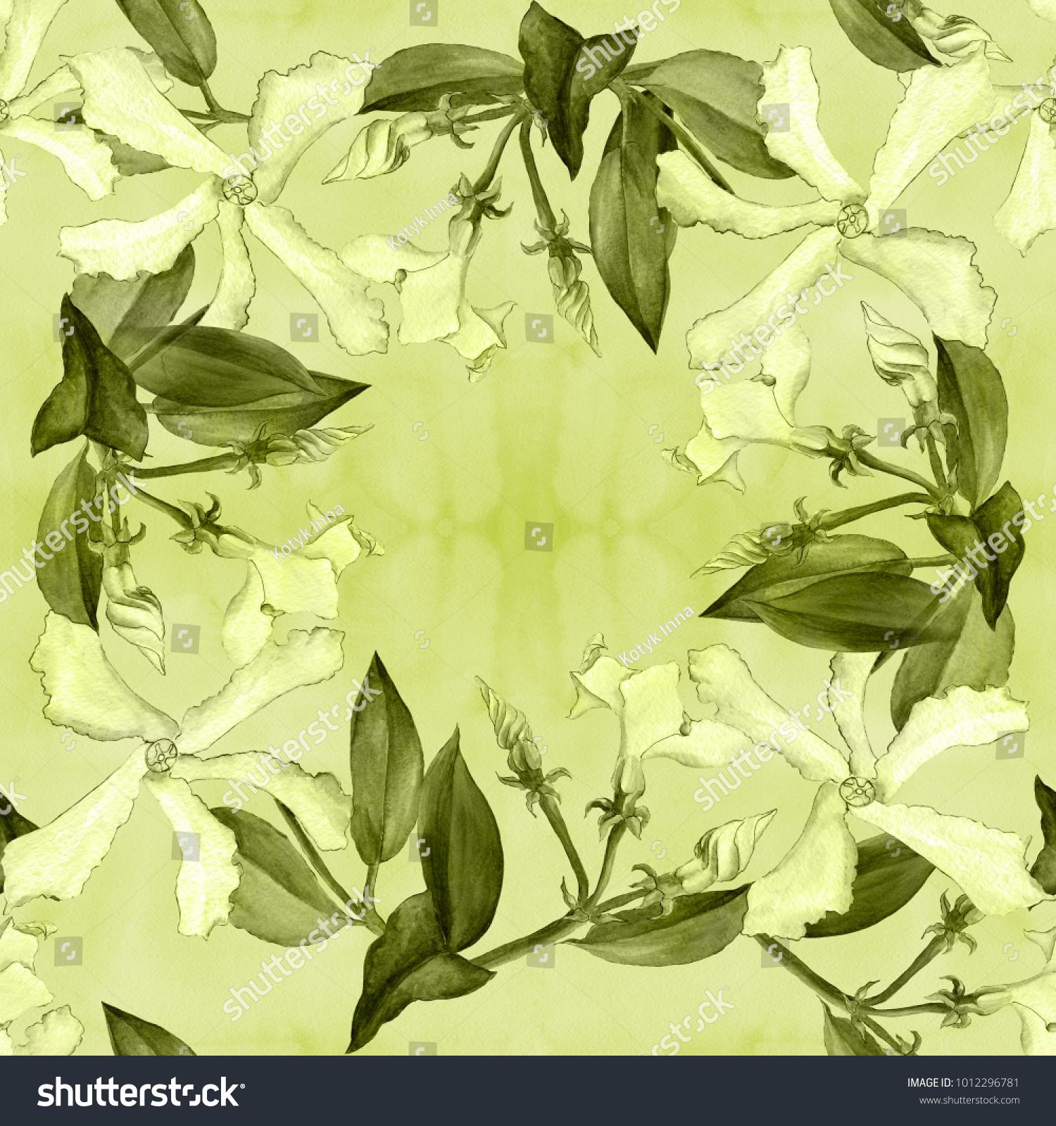 Jasmine Flowers Buds Leaves Seamless Background Stock Illustration