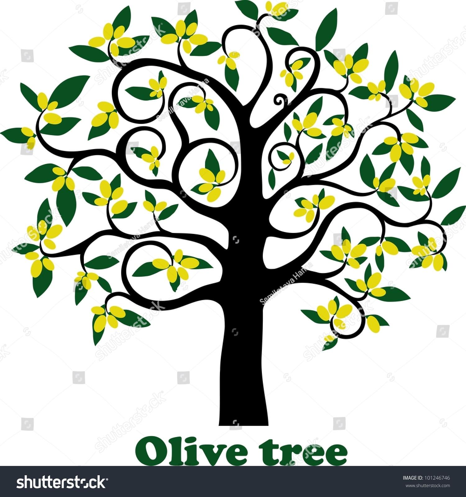 Olive Tree Full Olives Isolated On Stock Illustration ...
