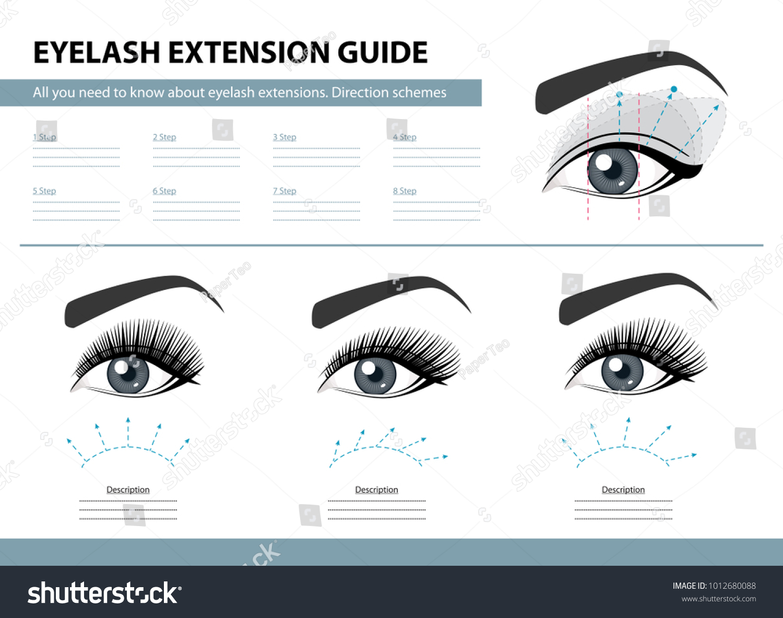 Eyelash Extension Guide Direction Schemes Tips Stock Vector Royalty