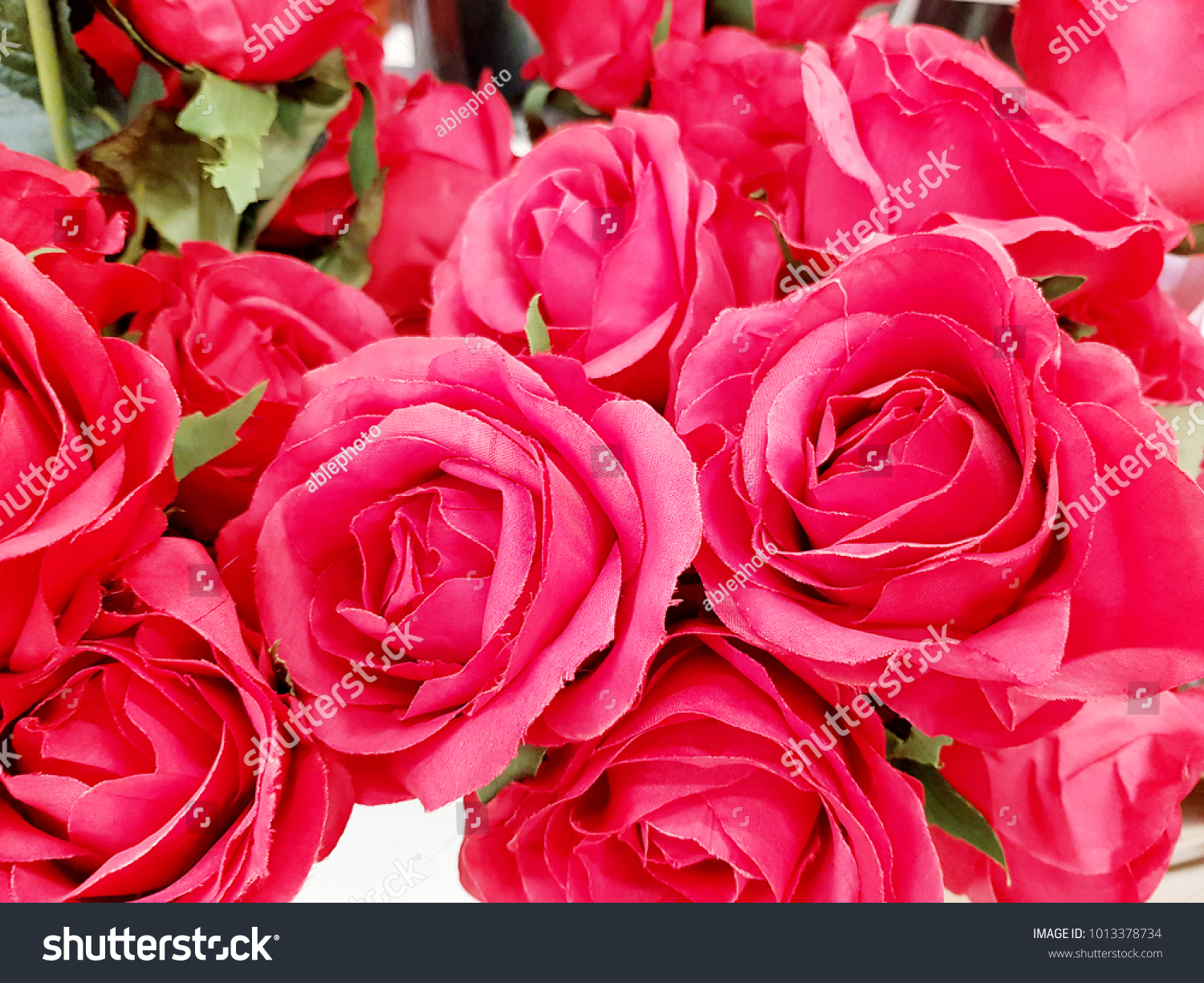 Red Roses Are Beautiful Flowers With Give Love Ez Canvas