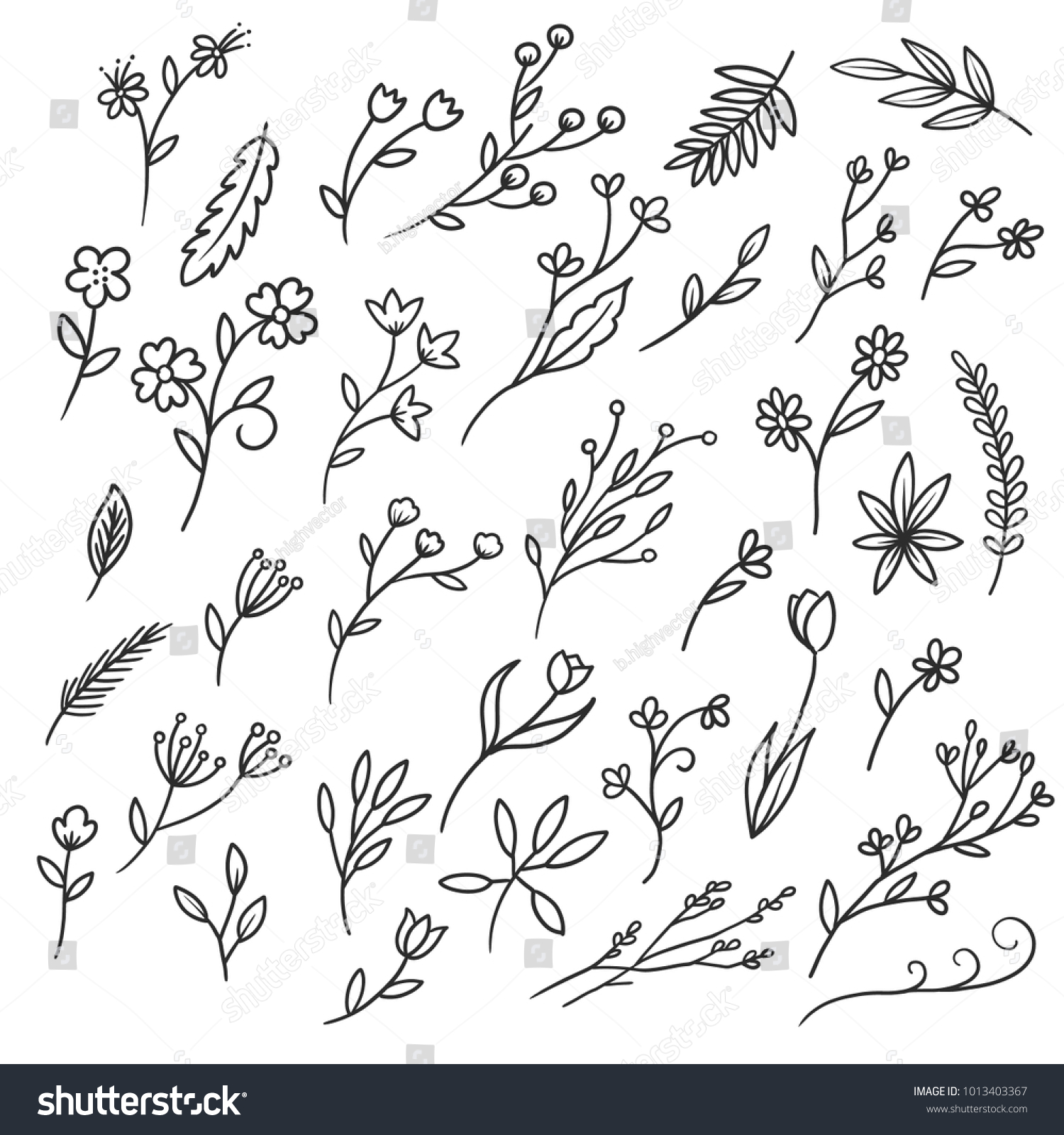 Wild Flowers Set Vintage Flowers Black And White Illustration In