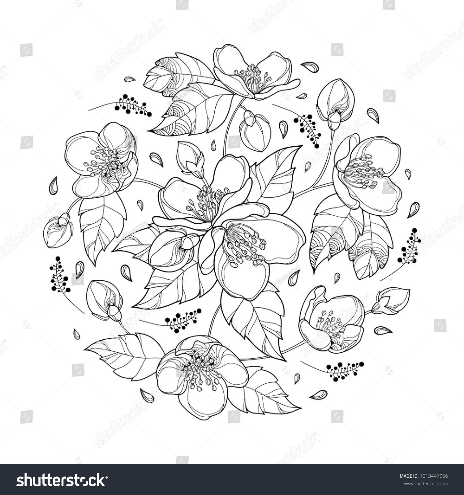 Vector Round Bouquet Outline Jasmine Flower Stock Vector Royalty
