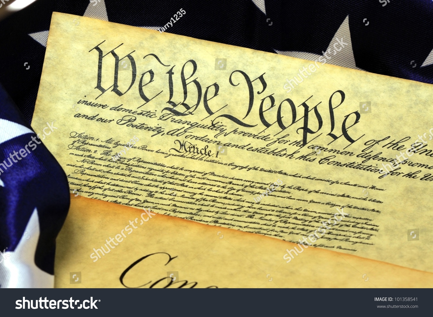american democracy the preamble of the In a constitutional democracy the authority of the majority is limited by legal and institutional means so that the rights of individuals and minorities are respected.