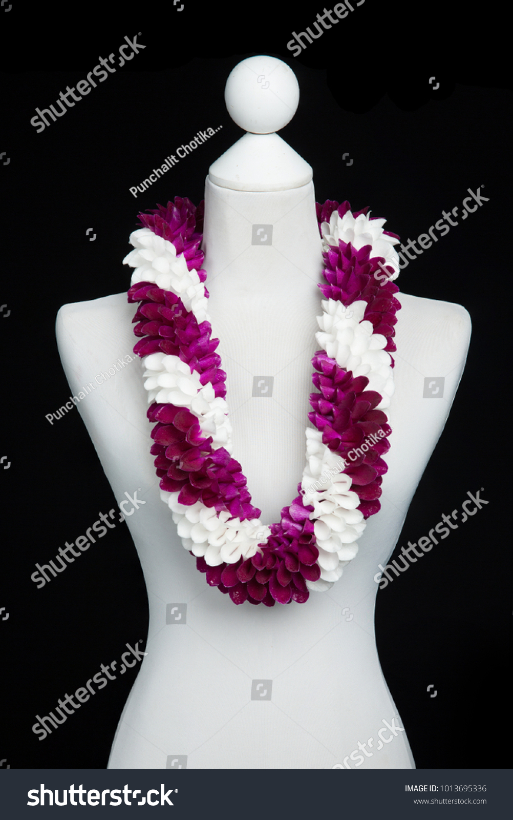 Hawaii fancy flowers lei necklace made stock photo royalty free hawaii fancy flowers lei necklace made from orchid flower petal purple and white in spiral izmirmasajfo Images