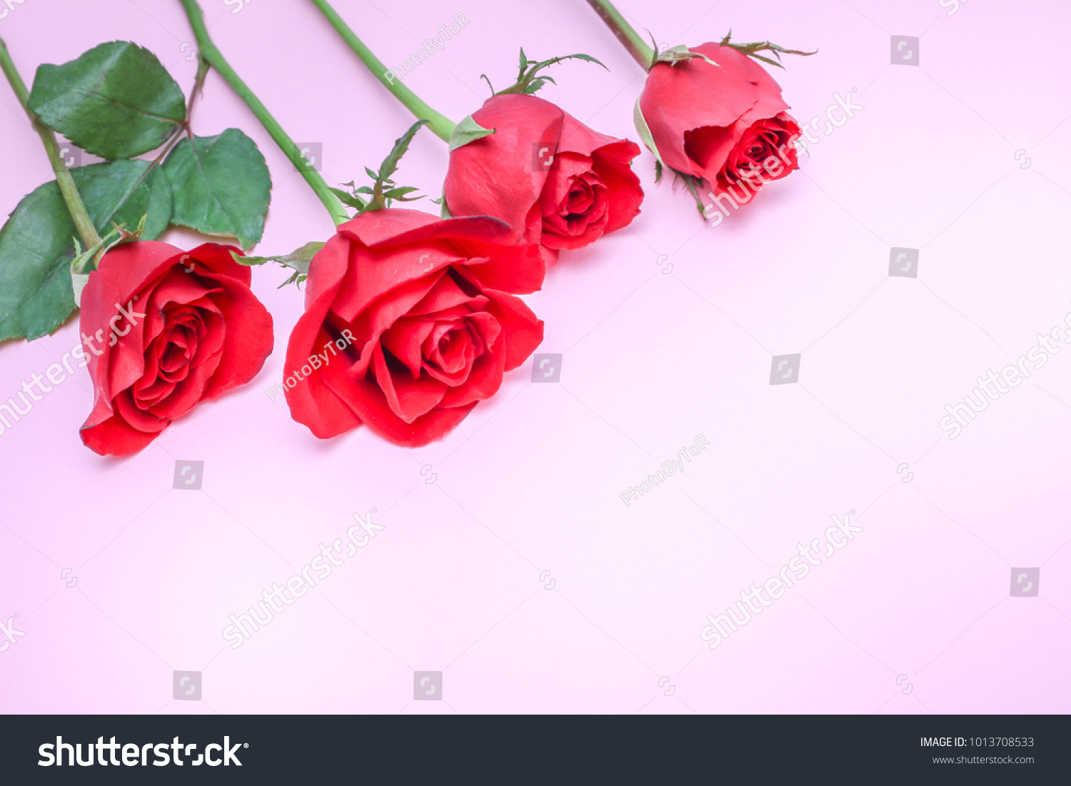 Beautiful Flowers Bouquet Red Roses Put Stock Photo Edit Now