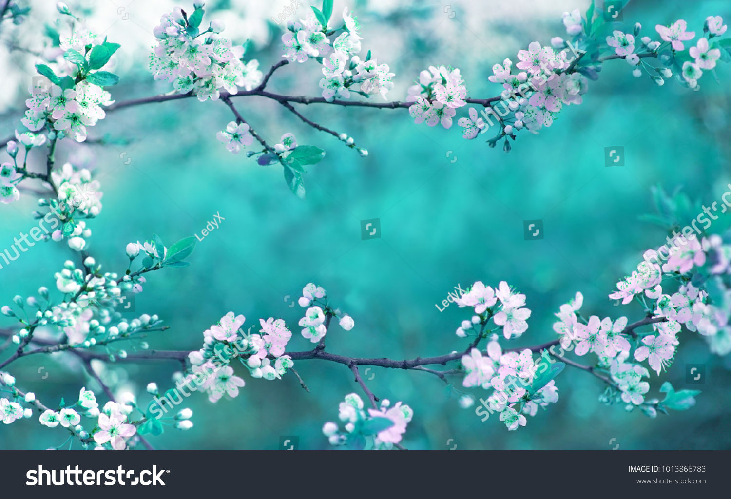 Beautiful spring floral background branches blossoming stock photo beautiful spring floral background with branches of blossoming cherry soft focus frame of pink izmirmasajfo