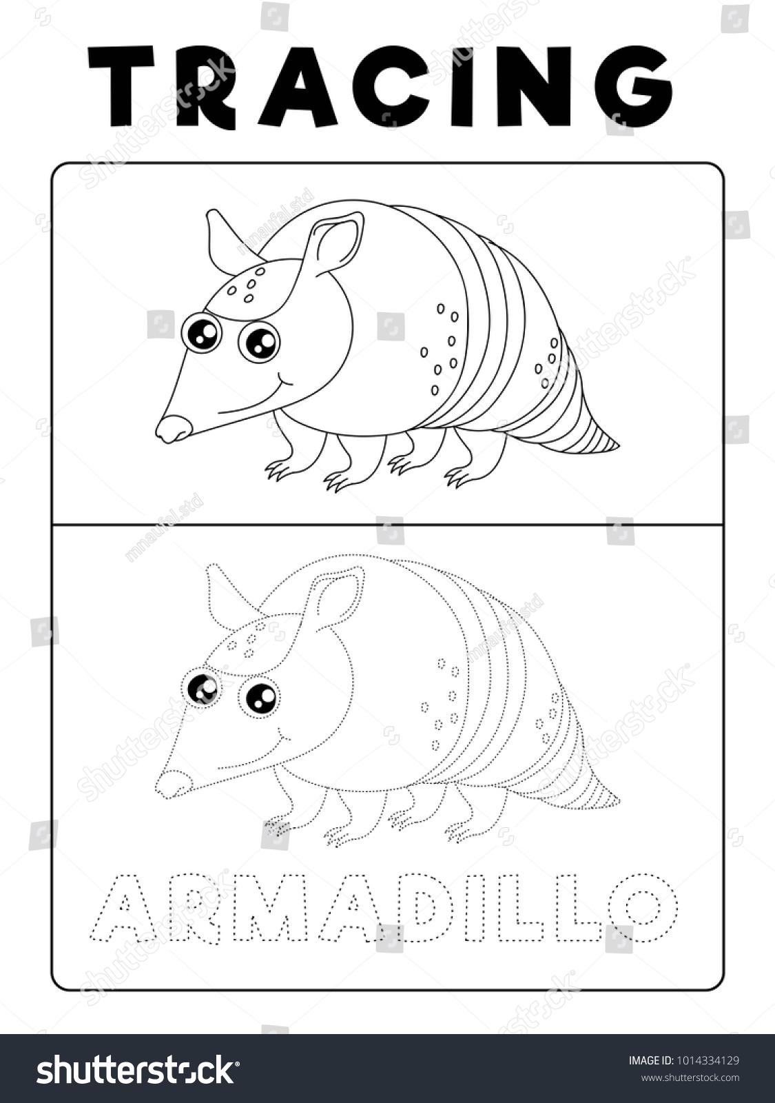 Funny Armadillo Animal Tracing Book Example Stock Vector ...